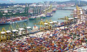mercados de exportación