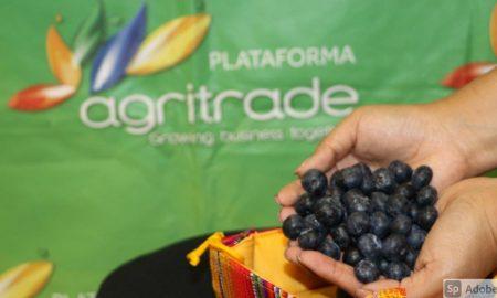 logística para productos agrícolas