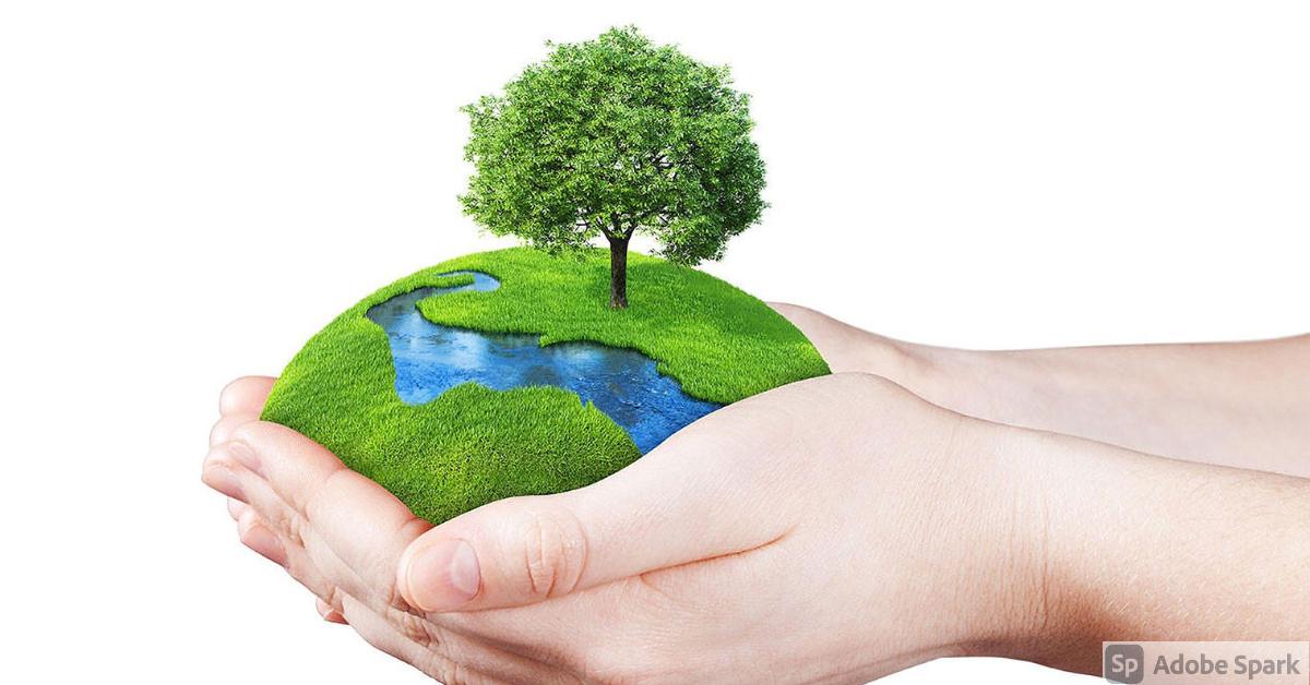 tendencias de consumo sostenibles