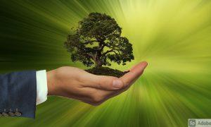 sostenibilidad en las empresas