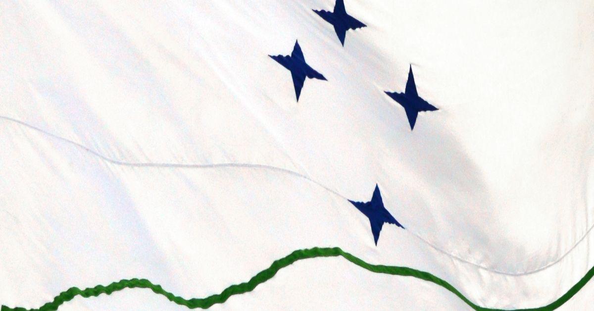 Mercosur y comercio
