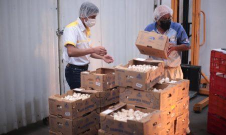 Scale Up: empresas guatemaltecas