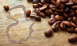 Guatemala y su café
